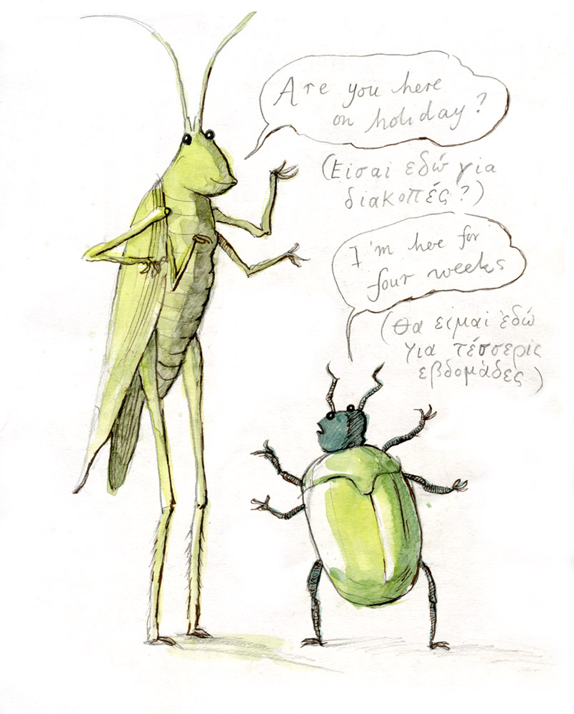 Grasshopper and Beetle