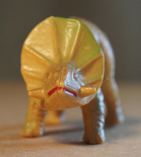Toro close up