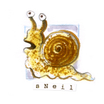 01 Sneil