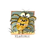 18 Vladimir