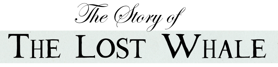 LOST WHALE story