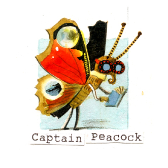 38 peacock