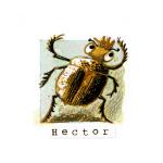 04 Hector