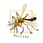 11 Matilda