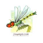23 Josephine