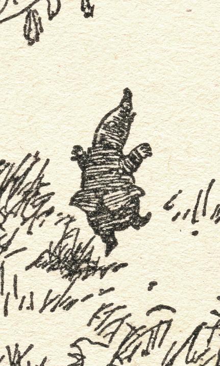 06 shep mole